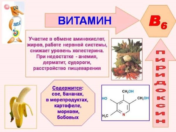 Вітамін B6.  Користь для організму, продукти, препарати в ампулах.  Інструкція по ЗАСТОСУВАННЯ, продукти, в якіх містіться, в таблетках, уколи.  Показання