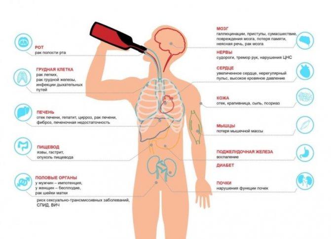 вплив алкоголю