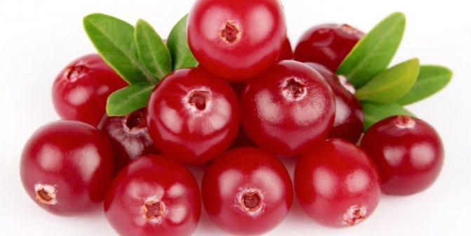ягоди брусниці