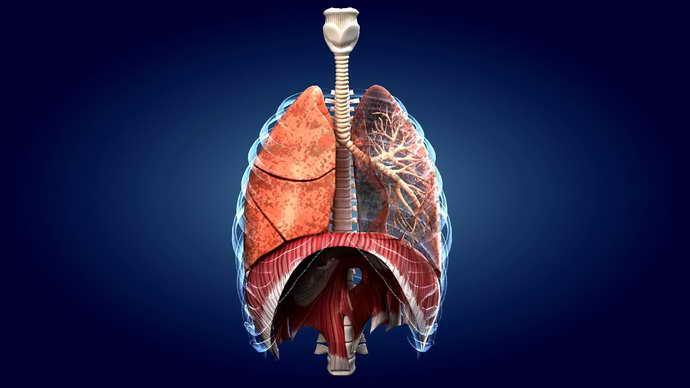 Захворювання легеневої системи і жовтий наліт