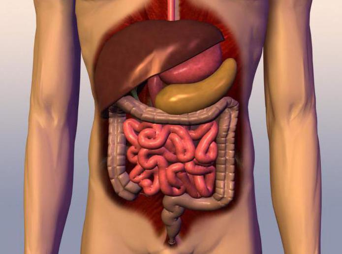 захворювання шлунково-кишково тракту