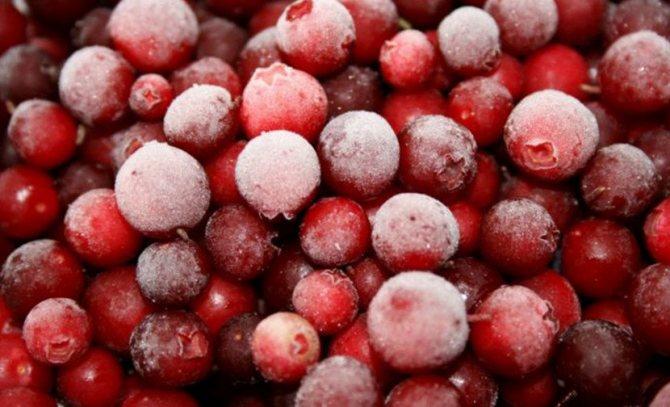 Заморожені ягоди брусниці