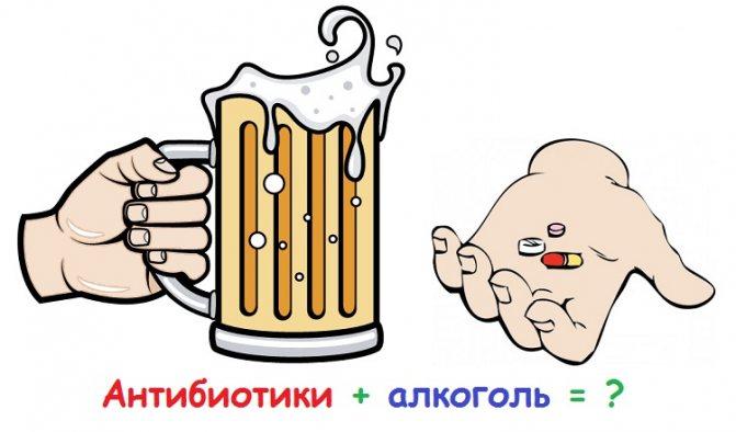 Зіннат и алкоголь сумісність